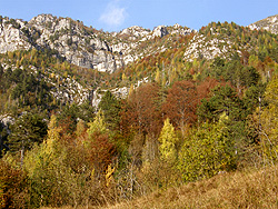 Autunno in Val Resia