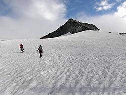 Vedretta della Punta Bianca (Weißzintferner)