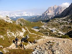 Salita al Sass de Stria con vista sul passo Valparola