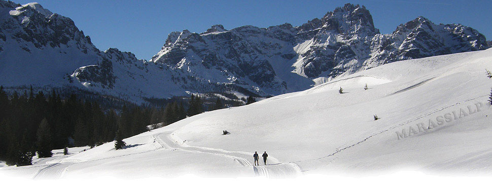 L'Alpe di Nemes dominato dal Gruppo dei Tre Scarperi
