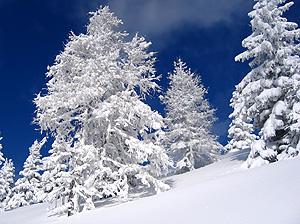 L'incantesimo della neve