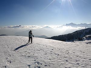 Salita alla Cima Bella, sullo sfondo le Alpi Giulie