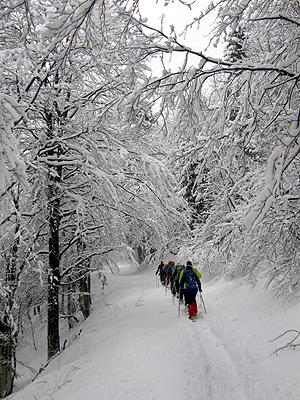 Salita sul versante nord del monte Stol
